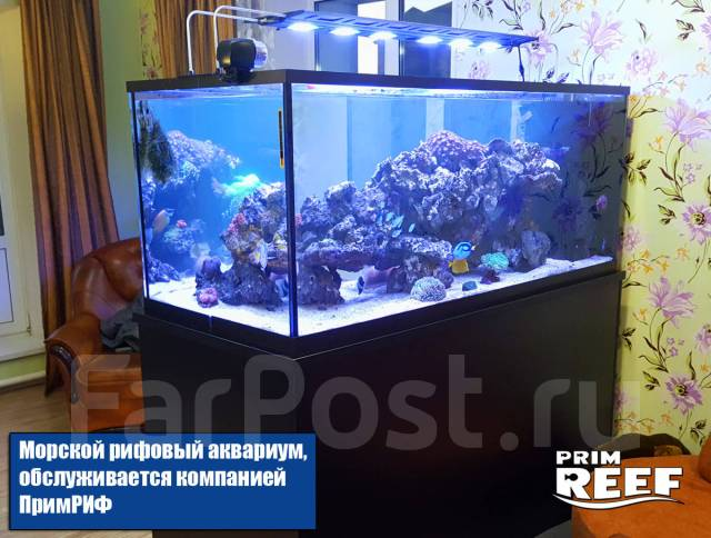 Аквариум - морской, пресноводный, для живых морепродуктов Обслуживание