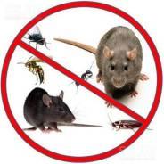 Защита от грызунов, насекомых, птиц.