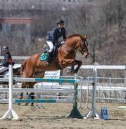 """КСК """"Казачий Стан"""": конный спорт, конкур, прогулки, фотосессии!"""