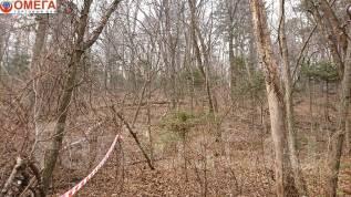 Продам земельный участок 25 соток на Черной речке. 2 500кв.м., собственность, от агентства недвижимости (посредник). Фото участка