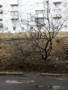 2-комнатная, улица Бокситогорская 41. Южный, частное лицо, 52кв.м. Вид из окна днём