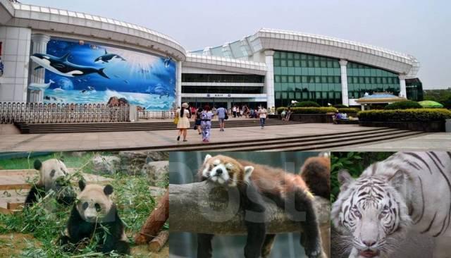 Пекин. Экскурсионный тур. Пекин! Скоростная электричка! Выезд с 19.05-26.05 на 8 дней!