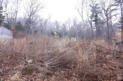 Продается участок на черной речке! Яхтовая. 1 000 кв.м., собственность, электричество, вода, от агентства недвижимости (посредник). Фото участка