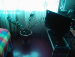 1-комнатная, улица Шошина 11. БАМ, частное лицо, 36кв.м. Комната