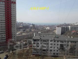 2-комнатная, улица Аллилуева 3. Третья рабочая, агентство, 49кв.м. Вид из окна днём