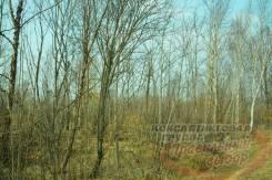 Отличный участок 10 соток на Соловей ключе. 1 000кв.м., собственность, электричество, от агентства недвижимости (посредник). Фото участка