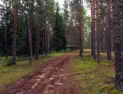 Продаю участок ИЖС в КП Медовое. 600кв.м., собственность, электричество, вода