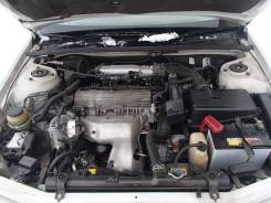 Высоковольтные провода. Toyota: Nadia, Corona, Ipsum, Camry Gracia, Gaia, Mark II Wagon Qualis, RAV4, Avensis, Camry, Carina ED, Corona Exiv, Vista, C...