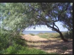 Земельный участок на берегу моря п-в Песчаный. 3 700кв.м., собственность, электричество, вода, от частного лица (собственник). Фото участка