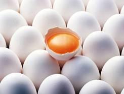 Домашние белые куриные яйца