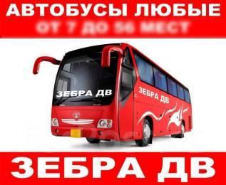 Автобусы любые в аренду (заказ) для перевозки детей и взрослых!