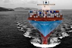 Оформление морских документов для матросов, рыбообработчик, моториста.