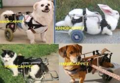 Ветеринария, реабилитация. Под заказ