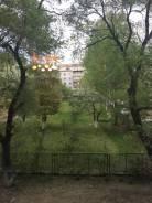 1-комнатная, улица Суханова 53. центр, частное лицо, 28кв.м. Вид из окна днём