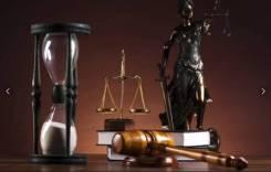 Адвокат ( уголовные и гражданские дела)