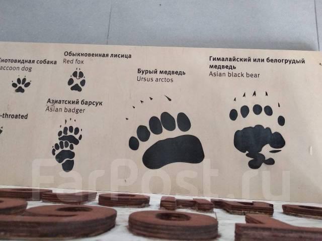 """Национальный парк """"Земля леопарда"""" 24, 31 августа, 7, 14 сентября"""