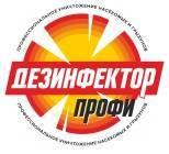 Расклейщик. ИП Руднов Н.Н. Улица Пушкина 27