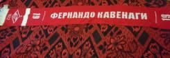 Шарф Спартак москва фернандо кавенаги