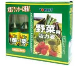 Овощные растения.