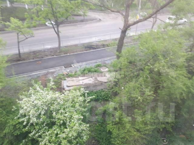 2-комнатная, улица 50 лет ВЛКСМ 24/1. Трудовая, агентство, 52кв.м. Вид из окна днем