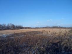 12 земельных участков одним лотом под дачное строительство. 14 400кв.м., собственность, от агентства недвижимости (посредник). Фото участка