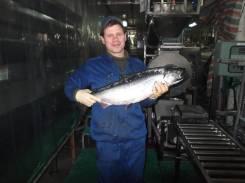 Мастер обработки рыбы. Высшее образование по специальности, опыт работы 1 год