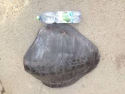 Панцирь черепахи большой в интерьер. Оригинал
