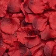 Лепестки роз.