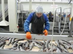 Рыбообработчик. Ульчский район
