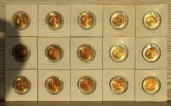 Набор Красная книга 15 монет 1991-1994, оригинал