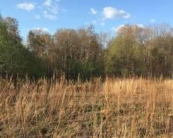 Земельный участок 10 соток Осиновая речка. 1 000кв.м., собственность, от агентства недвижимости (посредник)