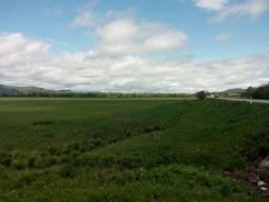 Продам земельный участок в с. Перетино. 2 500кв.м., аренда, от агентства недвижимости (посредник). Фото участка