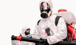 Дезинсекция Уничтожение травля насекомых тараканов, клопов, Блох