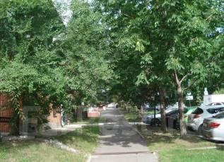 Продам помещение Фрунзе 47, 164.8кв. м. в Хабаровске. Улица Фрунзе 47, р-н Центральный, 165кв.м.