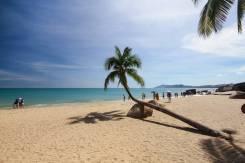 Санья. Пляжный отдых. Санья пляжный отдых. от 19700 руб.