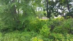 Земельный участок во Врангеле. 2 000кв.м., аренда, электричество, вода, от частного лица (собственник). Фото участка