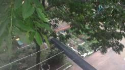 3-комнатная, улица Чапаева 8. центр села, частное лицо, 57кв.м. Вид из окна днём