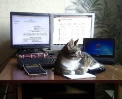 Модернизация тупых компьютеров и ноутбуков. переустановка windows. Акция длится до, 1 сентября