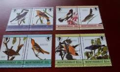 Экзотика! Монтсеррат. 8 чистых марок 1985 г. Птицы. Полная серия. Отли