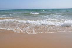 Сдам дом в п. Южно-Морской (п. Ливадия), с услугами, 5 минут от моря. От частного лица (собственник)