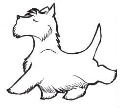 Стрижка кошек и собак у Вас дома