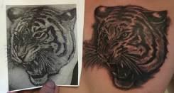 Мастер татуировки. Высшее образование