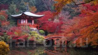 """Япония. Токио. Экскурсионный тур. Групповой тур """"осенние прогулки по Японии""""."""