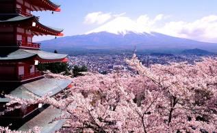 """Япония. Осака. Экскурсионный тур. Групповой тур в Японию """"Киото-Осака-Нара-Хиросима-Миядзима"""""""