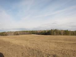 Продажа 10 гектар в Емельяновском районе, сельхозназначения. 10 000кв.м., собственность
