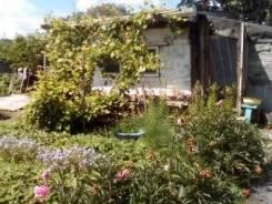 Продаётся дача 4 сады. От частного лица (собственник)