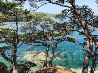 Экскурсия: Дальневосточный морской заповедник, Средняя или Фуругельма