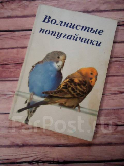 Книга по уходу за попугайчиками с 1 рубля