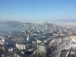 2-комнатная, улица Аксаковская 3. Центр, частное лицо, 97кв.м. Вид из окна днём