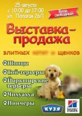 25 августа. Выставка-Продажа элитных щенков